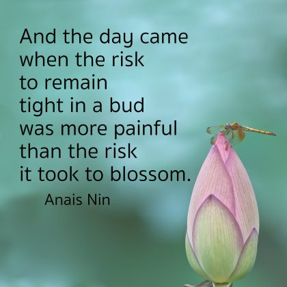 """""""And the day came when the risk to remain tight in a bud was more painful than the risk it took to blossom."""" - Anais NIn (with photo of a rosebud)"""